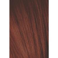 Крем-краска Schwarzkopf professional Igora Royal 6-88, темный русый красный экстра, 60 мл