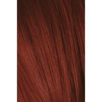 Крем-краска Schwarzkopf professional Igora Royal 5-88, светлый коричневый красный экстра, 60 мл