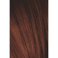 Крем-краска Schwarzkopf professional Igora Royal Absolutes 4-80, средний коричневый красный натуральный, 60 мл