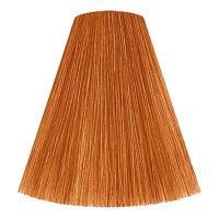 Крем-краска для волос Londa Professional Color Creme Ammonia Free Интенсивное тонирование, 8/43 светлый блонд медно-золотистый, 60 мл