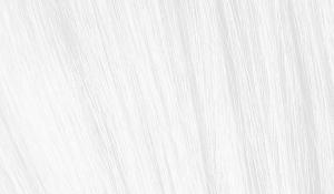 Крем-краска Indola Profession Natural Essentials 100, безпигментный микстон, 60 мл